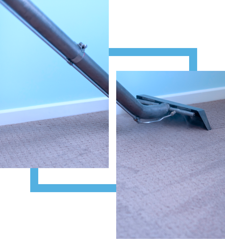 carpet cleaning winchester